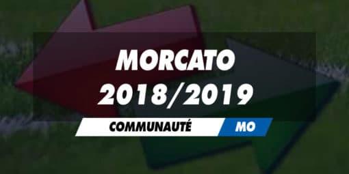 MOrcato